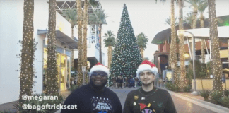 Video: Mega Ran And Bag Of Tricks Cat – Christmas Business