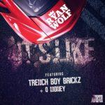 "[VIDEO] DJ Ryan Wolf feat. Trenchboy Brickz & Q Money – ""It's Like"""