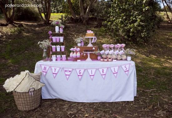 pinktruck desserts