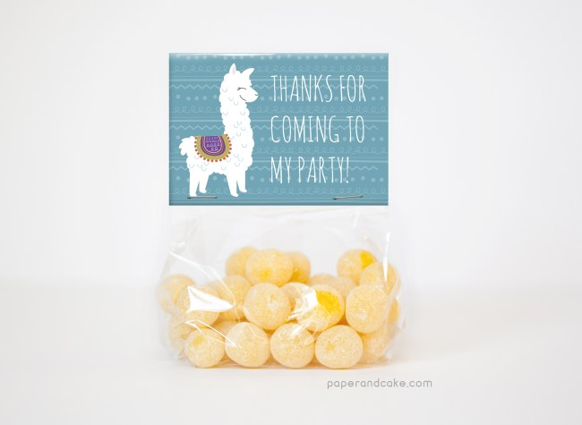 alpaca party favor kit