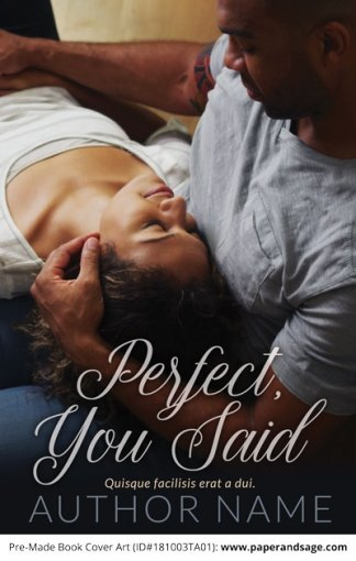 Pre-Made Book Cover ID#181003TA01 (Perfect, You Said)
