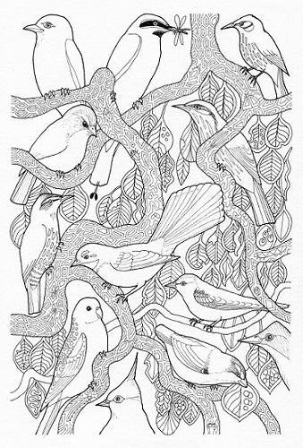 Bimblebox Wonderland - canopy birds - thumb