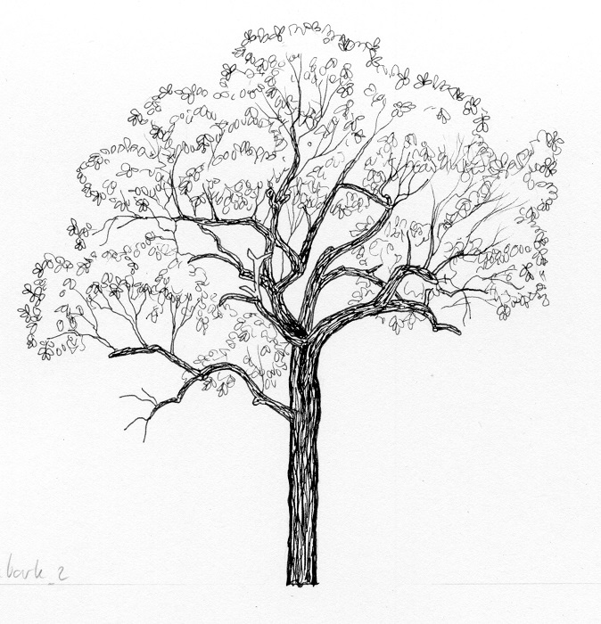"Sketch for ""The tree..."" from Bimblebox Wonderland."