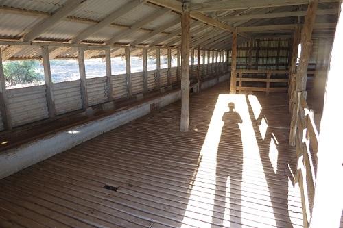 Ram shed