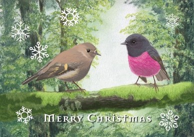 pink-robins-small