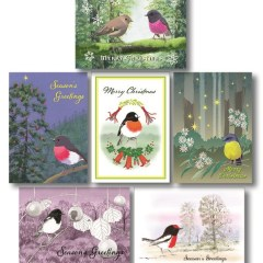 Set of 6 Australian Robin Christmas cards