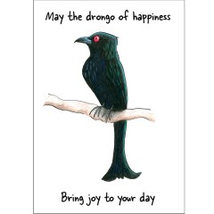 Drongo of happiness card