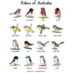 Robins of Australia organic cotton tea towel
