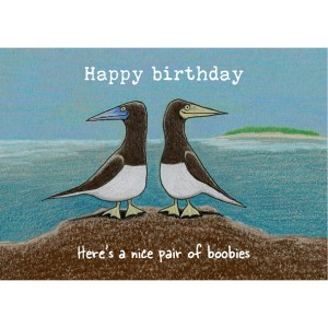 Here's a nice pair of boobies birthday card