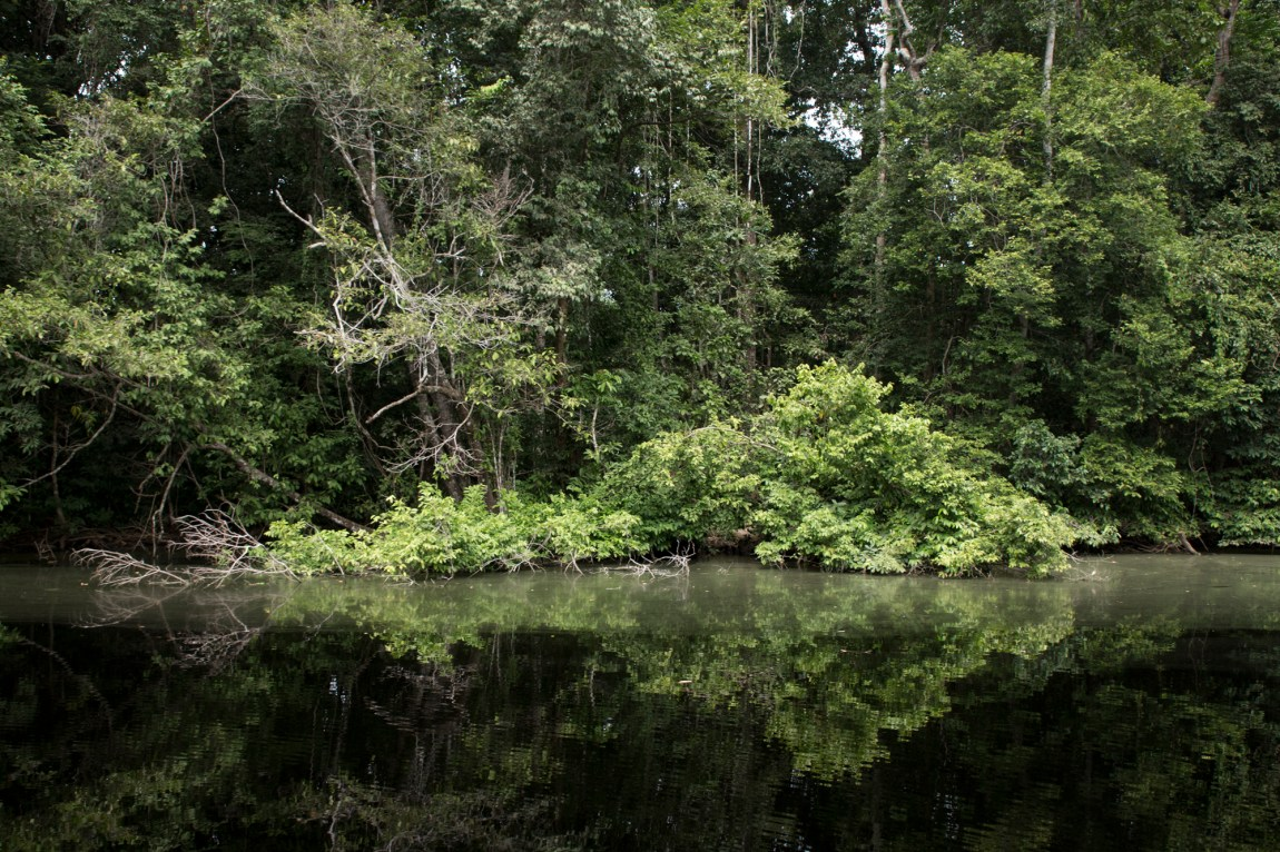 Gabon - Rivière Mpivie - www.paperboat.fr