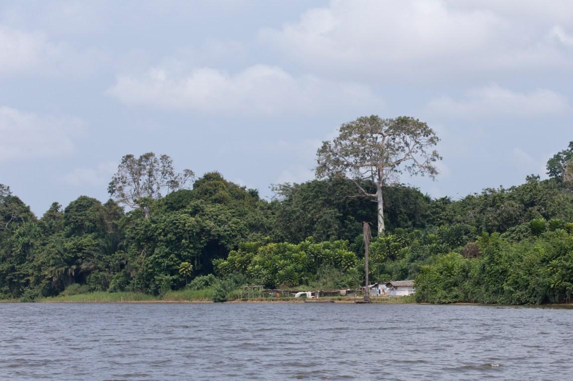 Gabon - Ogooué - www.paperboat.fr