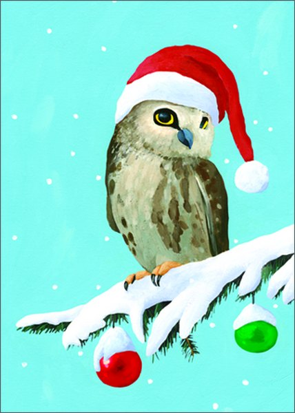 Owl Box Of 15 Christmas Cards By Allport Editions