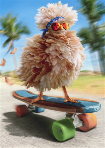 Fancy Chicken Skateboarding Funny Birthday Card By Avanti