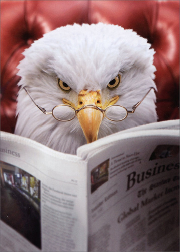 Eagle Reads Newspaper Funny Fathers Day Card By Avanti Press