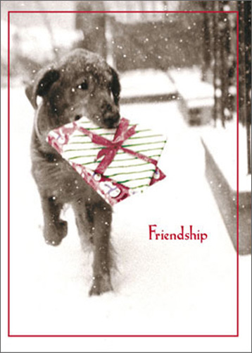 Dog Carrying Present In Snow Funny Humorous Black Lab