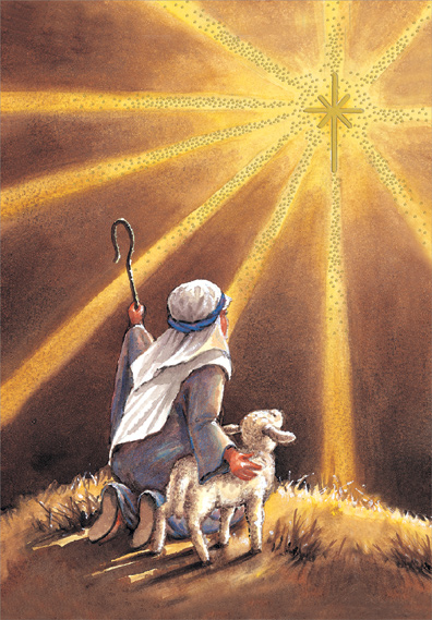 Shepherd Sees Star Box Of 18 Religious Christmas Cards By