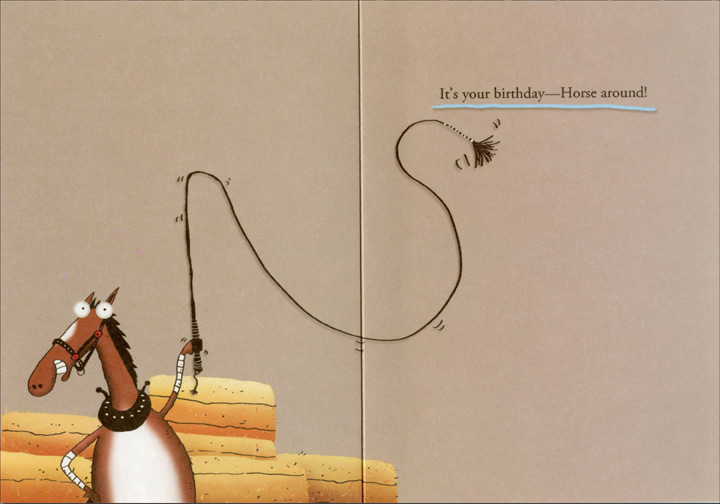 50 Shades Of Hay Funny Humorous Birthday Card By Oatmeal
