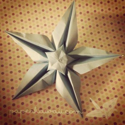 IMG_2698origami star flower