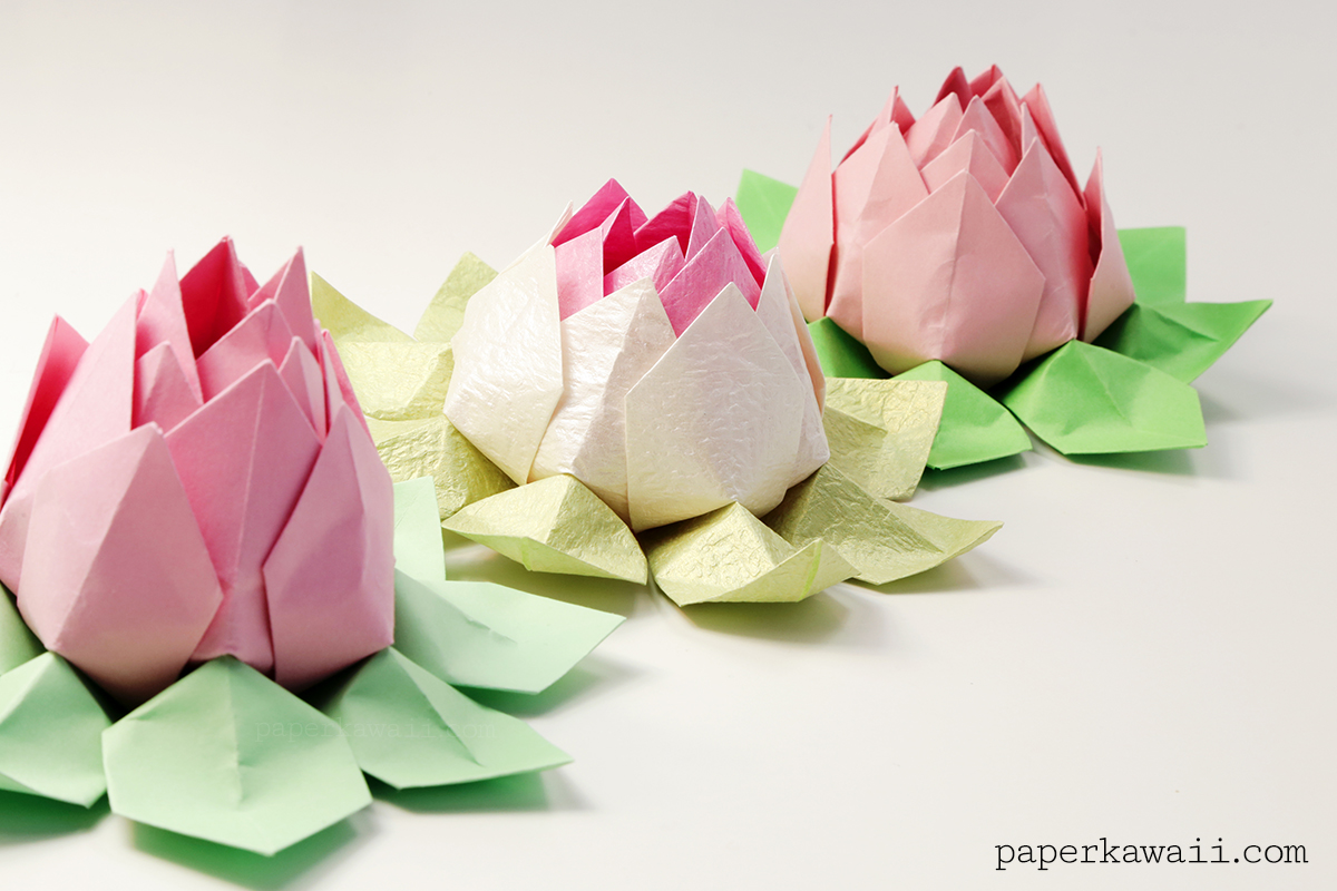 How to make an easy origami lotus flower | This easy origami… | Flickr | 800x1200
