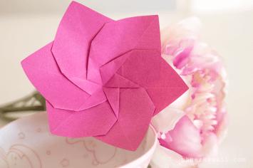 origami-flower-lafosse-alexander-book-12