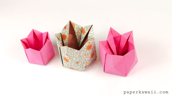 Pentagonal Origami Crown Box / Lid Instructions via @paper_kawaii