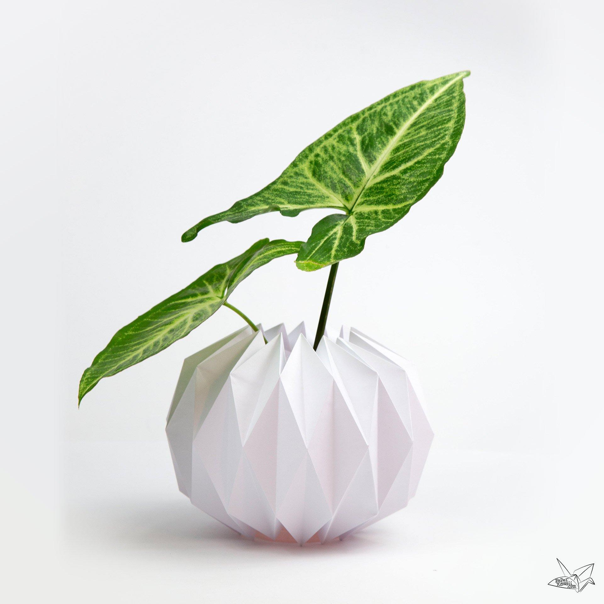Origami Vase Cover Tutorial Accordion Origami Paper Kawaii