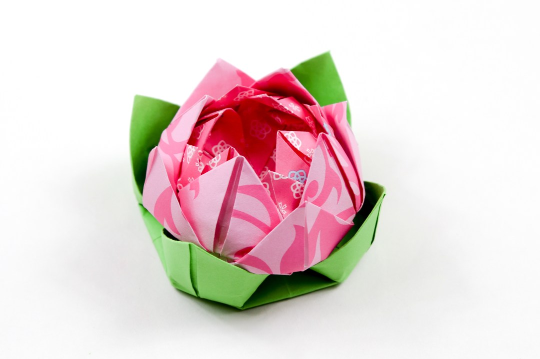 Modular Origami Lotus Flower - Video Tutorial | Flower video ... | 719x1080