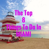 The Top 8 Things To Do In Miami