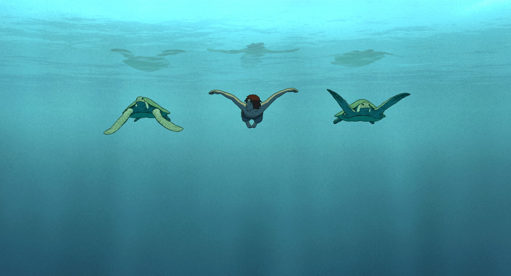 Risultati immagini per la tartaruga rossa