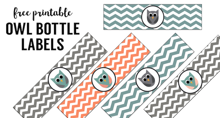 Free Printable Owl Water Bottle Labels Paper Trail Design - 8 oz water bottle label template free