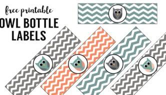 Free Printable Owl Water Bottle Labels