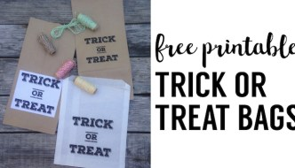 Free Halloween Treat Bag Printables. Easy DIY Halloween treat bags free printable. Print these trick or treat bag labels.
