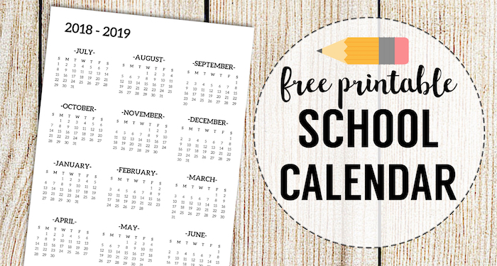 picture about Printable School Year Calendar known as 2018-2019 Faculty Calendar Printable Totally free Template - Paper