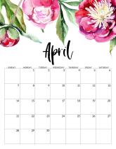 Free Printable Calendar 2019 - Floral. Watercolor Flower design style calendar. Monthly calendar pages. Cute office or desk organization. #papertraildesign #2019calendar #calendar #calendar2019 #floralcalendar