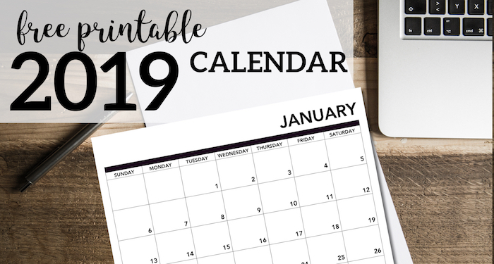 graphic about Free Printable Calendars November named 2019 Printable Calendar Absolutely free Webpages - Paper Path Layout