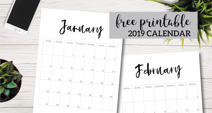 Free Printable 2019 Calendar Template Pages. January, February, March, April, May, June, July, August, September, October, November, December. #papertraildesign #calendar #2019 #2019Calendar #organize #NewYear