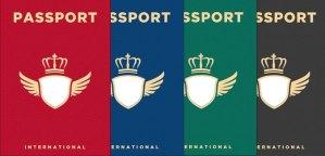 printable passport template role play schools