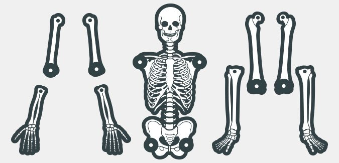 photograph regarding Skeleton Cut Out Printable referred to as Build your personalized skeleton - PAPERZIP