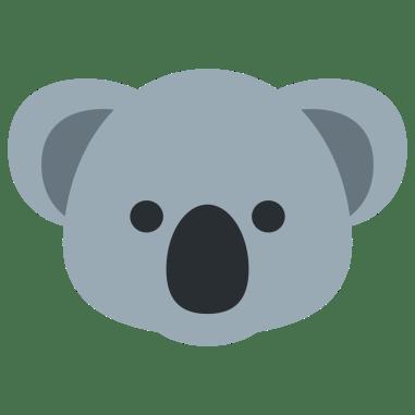 koala-face