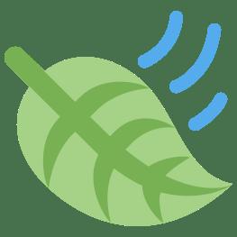 leaf-in-wind