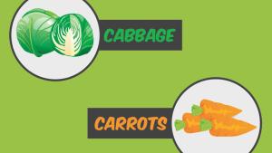 food display cards classroom printable