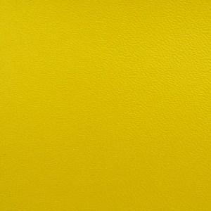 skito jaune
