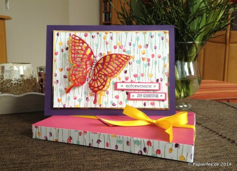Designerpapier Zarter Frühling, Geburtstagskarte, Stampin Up!, Frühjahr-/Sommerkatalog 2015, Glitzersteine, Crystal Effects, Thinlits Formen Schmetterlinge, Envelope Punch Board