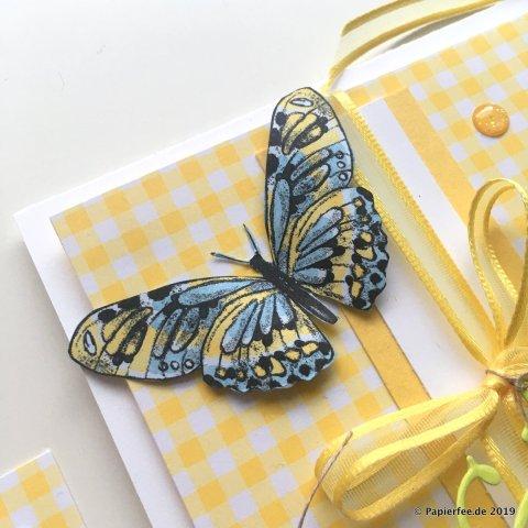 Stampin'Up! Gutscheinkarte, Gutschein verschenken, Designerpapier Schmetterlingsvielfalt, Sala-a-Bration 2019, SAB, Designerpapier Gartenglück, Osterglocke, Framelitsformen Schön Geschrieben