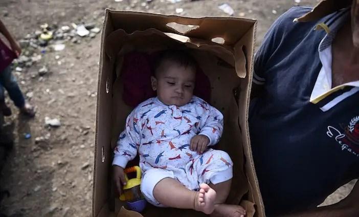 syrian-baby