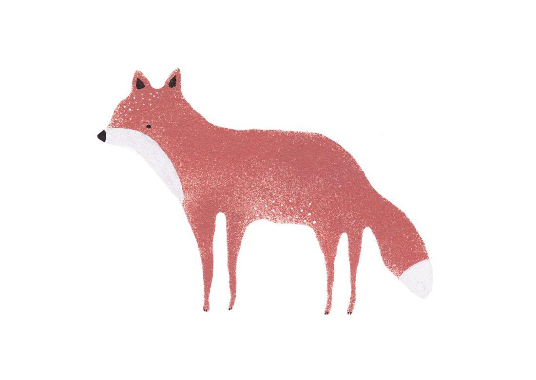 Fuchsillustration-Rotfuchs