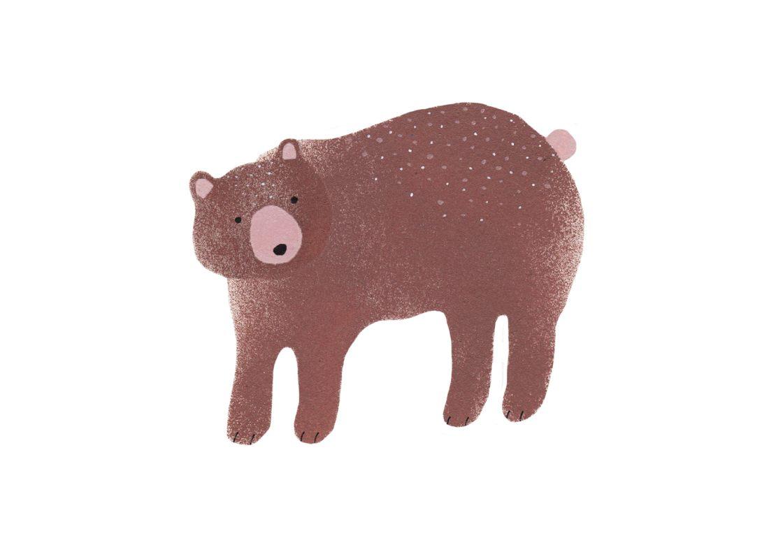 Bärillustration-Braunbär-Grizzly
