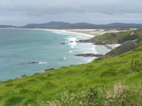 day2-rangiputa-beach