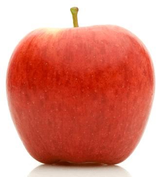 apple-ambrosia