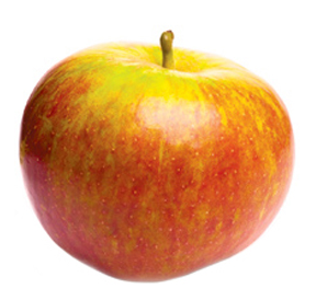 apple-orangepippin